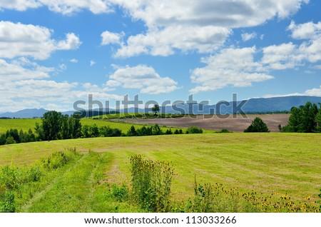 Vast landscape of Biei, Hokkaido. (in summer)