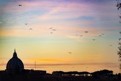 Vatican Dome View Architecture Night Sunset Shots Goldenhour