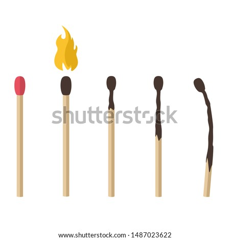 Vector Icon cartoon matches sticks  set. Image match with fire and burning mach stick art. Illustration matchstick in flat style