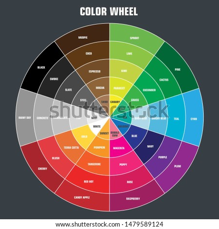 Vector icon color wheel palette. Image graphic design color wheel diagram in flat style. Illustration color wheel color names