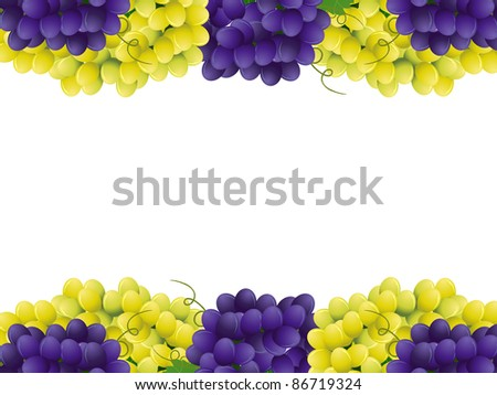 Vector image of violet and yellow grape with green leaves