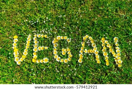 Vegan word text written with daisy flowers in fresh green grass. #579412921