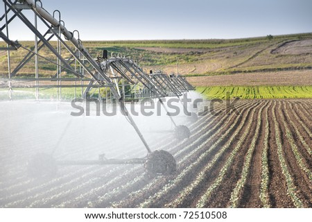 vegetable  field and irrigation equipment #72510508