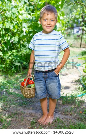 Vegetable garden - little gardener boy with a basket of organic zucchini and tomatoes