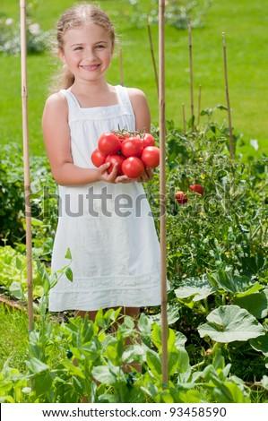 Vegetable garden - lovely gardener with harvests of ripe tomatoes