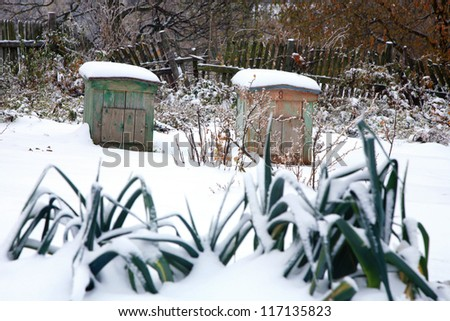 Vegetable garden with beehives covered with first snow. Winter garden.