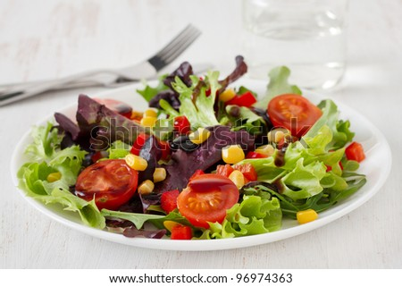 vegetable salad on the plate - stock photo