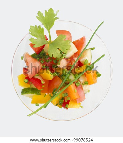 Vegetable salad with a piece of celery and onions with feathers on a white background. top view