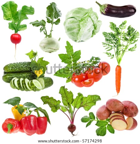 vegetables big collection set isolated on white background