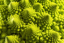 Vegetables. Detail of the romanesque cauliflower.