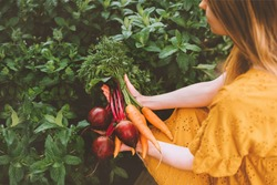 Vegetables harvest freshly picked from garden healthy lifestyle vegan food organic beet and carrot bunch eco friendly home grown woman gardening sustainability agriculture concept