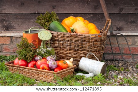 Vegetables in a basket on a wooden wall background