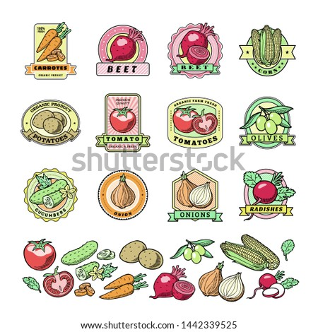 Vegetables logo healthy vegetably logotype tomato and carrot for vegetarians organic food in grocery shop illustration vegetated badges set isolated on white background