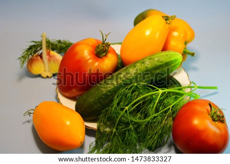Vegetables of different varieties on a gray background.