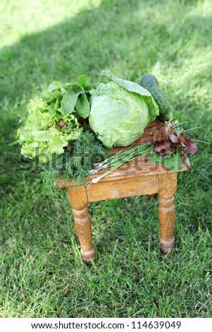 vegetables on the grass in garden