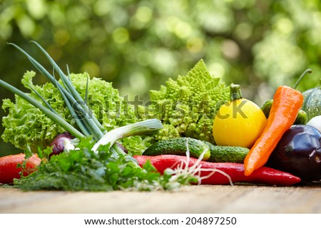 Vegetables on wood table in garden