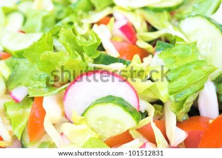 Vegetarian food. Lettuce from green goods .