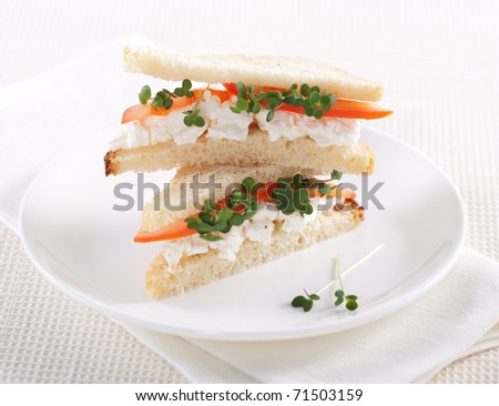 Vegetarian sandwiches with cottage cheese, tomatoes and mustard sprouts