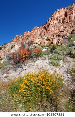 Vegetation below mountains at Fremont Indian State Park of Utah