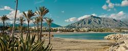 vegetation, palm trees, beach and mountain of Puerto Banus, Marbella, Malaga.