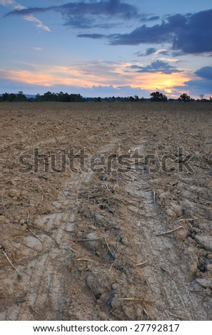 Vehicle tracks leading off into a barren field and disappearing into the distance with the sun setting in the background.