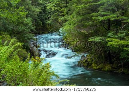 Venado rio, Panguipulli, Valdivia Province, Los Rios, Chile on November 9, 2015. Chilean Patagonia.