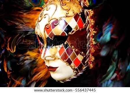 Venetian mask with plumage. Toned photo.