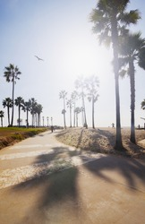 Venice beach in Los Angeles