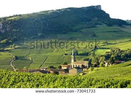 Vergisson with vineyards, Burgundy, France - stock photo