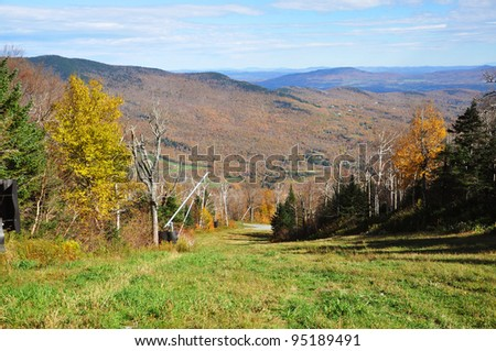 Vermont Fall Foliage in forest on Mount Mansfield in Vermont, USA