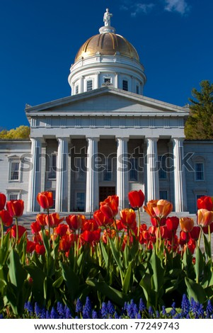 Vermont State House Tulips