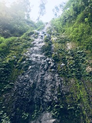 Vertical cliffs with small waterfalls, splashes of water, moss and shrubs. Photos taken from below - Image.