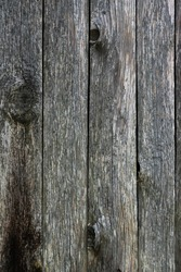 Vertical close up of grey colour old wood texture background.