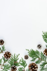 Vertical flat lay Christmas tree branches with pinecones on white background. Mockup with copy space for greeting text or xmas banner