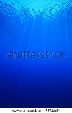 Vertical image of sun rays in clear blue sea water