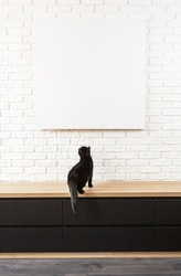 vertical large white brick wall and canvas fragment in the center with place for text.  black cat sits on a wooden table and look at a blank poster with place for text.   pet pranks in home interior