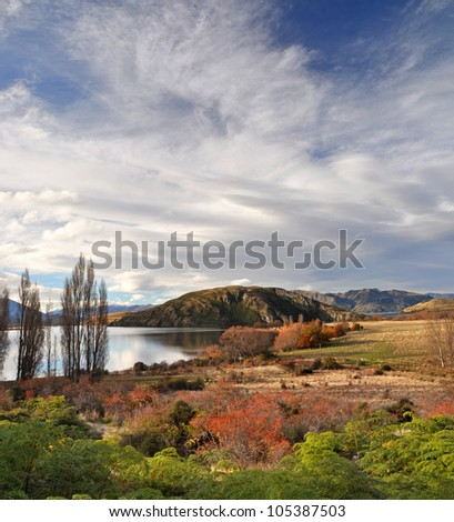 Vertical panoramic view of Lake Wanaka in Autumn. In the foreground are wild red Rose Hip bushes. In the background is a dramatic Norwest Sky with plenty of copy space. Central Otago New Zealand.