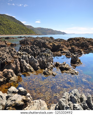 Vertical panoramic view of the rock pools of Kaikoura - a popular seal colony and whale watching tourist destination on the east coast of the South Island in New Zealand.