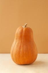 vertical photo elongated orange oval pumpkin of the Matilda variety on a monochrome beige background, food minimalism trend,selective focus