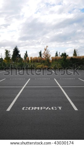 Vertical photograph of a parking lot with the word COMPACT in all spaces with trees and sky in background.