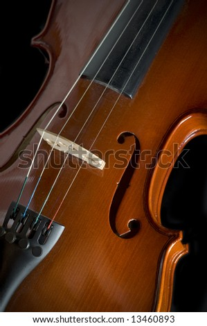 vertical picture of a fiddle on black background.