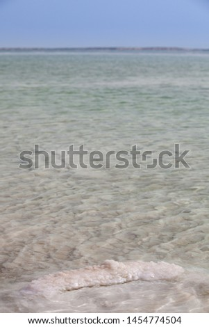 Vertical picture of dead sea with covered salt crystal stone oin front
