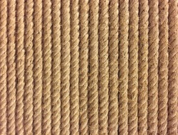 vertical rope