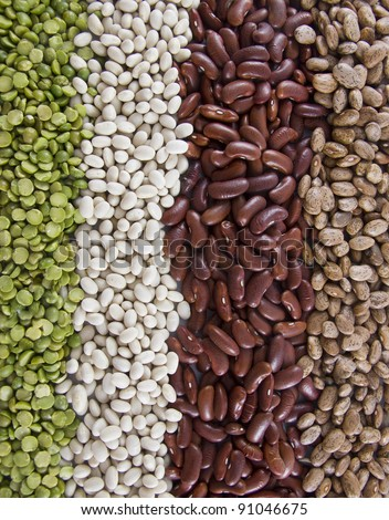 Vertical Row of Dry Beans (Split Pea, Navy, Kidney and Pinto)