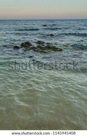 Vertical shot of a mediterranean shore with some rocks & moss towards the horizon at sunset time at Catalonia, Spain #1145945408