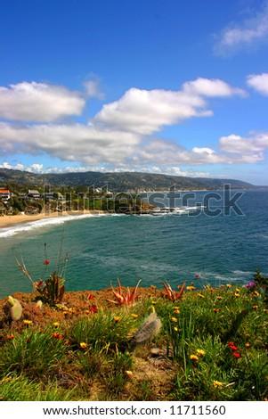 Vertical shot of Crescent Bay in Laguna Beach California