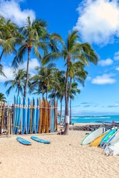 Vertical surfboards on the sandy beach in Waikiki with palm trees standing behind.  A beautiful blue sky background.