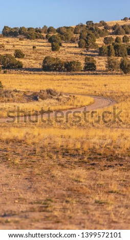 Vertical Unpaved trail winding through a vast grassy terrain viewed on a sunny day #1399572101