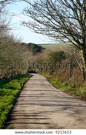 Vertical view of a countryside lane narrow B road in Cornwall, UK