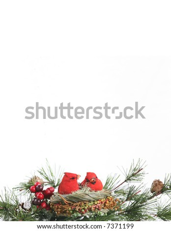 Vertical Winter Cardinals in Evergreen Stationary: An ornament of a cardinal pair nestled among evergreen branches against a white background. Space for copy. Holiday/winter concept. #7371199